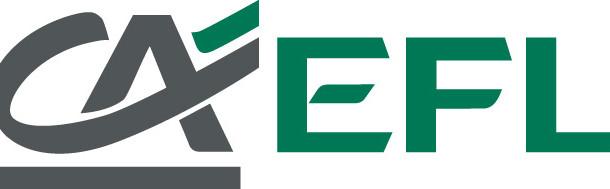 CA-EFL-skrót_poziom_07.12.11-rgb