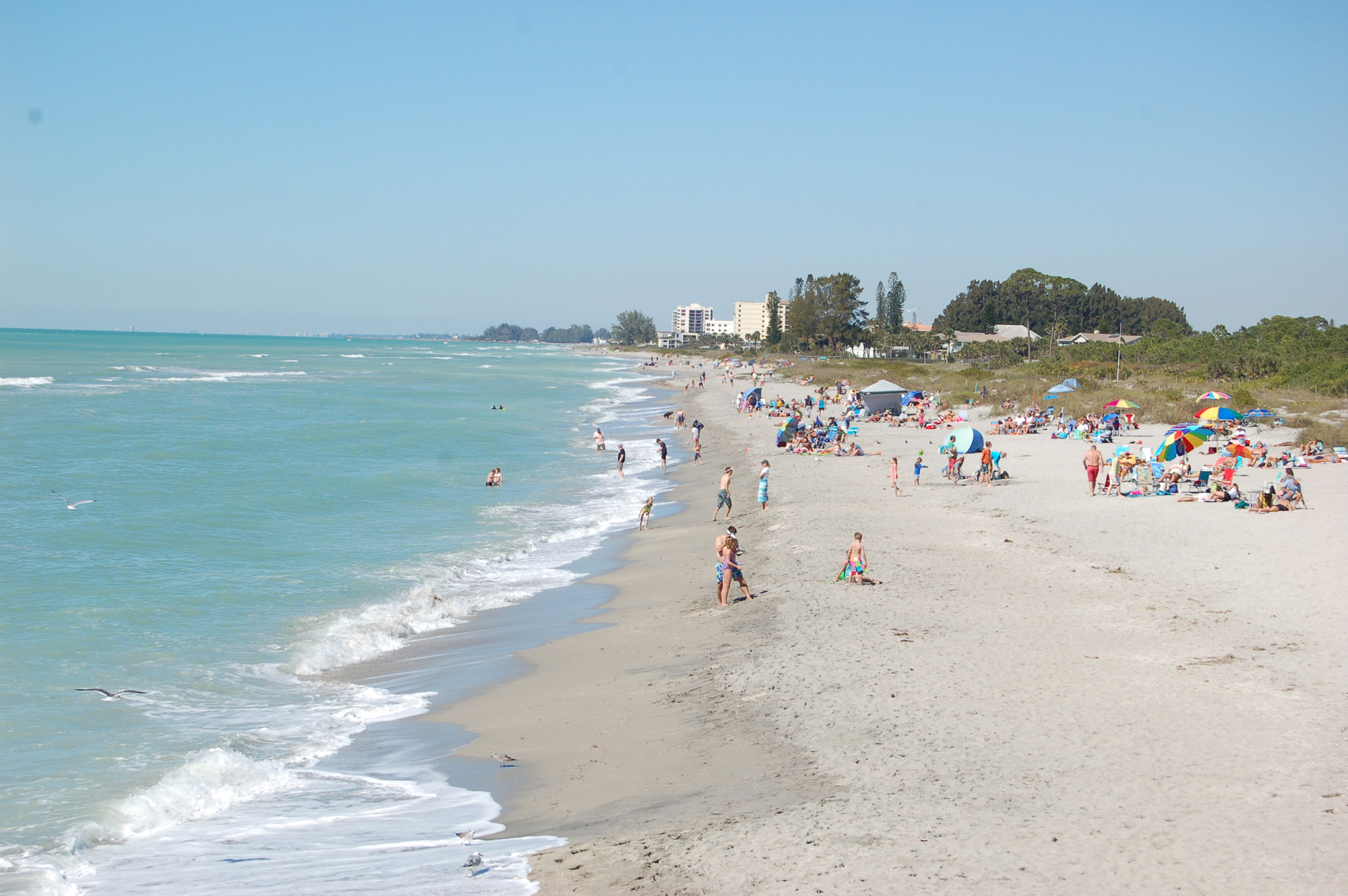 Hotels In Venice Fl