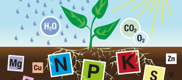 Nährstoffe für Pflanzen